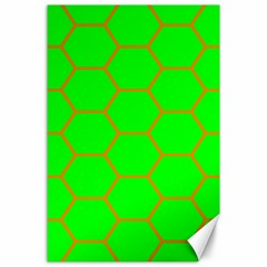 Bee Hive Texture Canvas 24  x 36