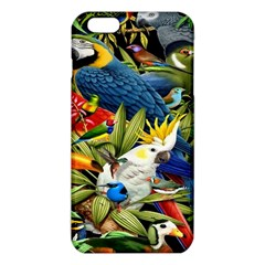 Animals Bird iPhone 6 Plus/6S Plus TPU Case