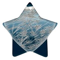 Frozen Heart Ornament (star)