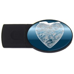 Frozen Heart Usb Flash Drive Oval (2 Gb)