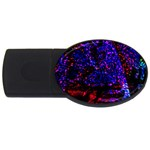 Grunge Abstract USB Flash Drive Oval (2 GB) Front