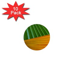 Pattern Colorful Palm Leaves 1  Mini Buttons (10 Pack)