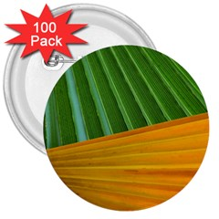 Pattern Colorful Palm Leaves 3  Buttons (100 Pack)