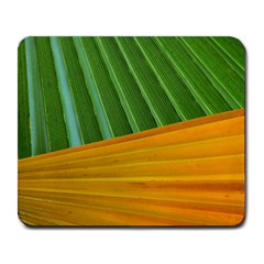 Pattern Colorful Palm Leaves Large Mousepads