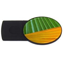 Pattern Colorful Palm Leaves Usb Flash Drive Oval (2 Gb)