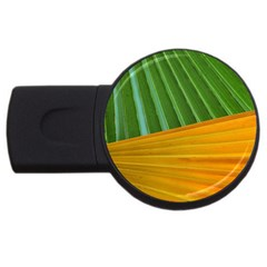 Pattern Colorful Palm Leaves Usb Flash Drive Round (4 Gb)
