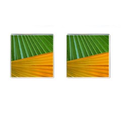 Pattern Colorful Palm Leaves Cufflinks (Square)