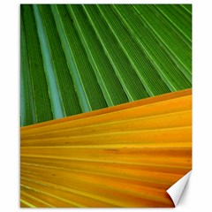 Pattern Colorful Palm Leaves Canvas 8  X 10