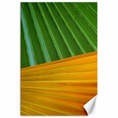 Pattern Colorful Palm Leaves Canvas 20  X 30
