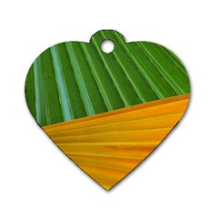 Pattern Colorful Palm Leaves Dog Tag Heart (two Sides)