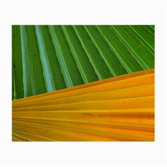 Pattern Colorful Palm Leaves Small Glasses Cloth (2-Side)