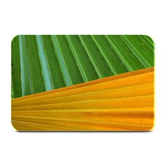 Pattern Colorful Palm Leaves Plate Mats