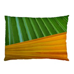 Pattern Colorful Palm Leaves Pillow Case