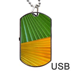 Pattern Colorful Palm Leaves Dog Tag Usb Flash (one Side)