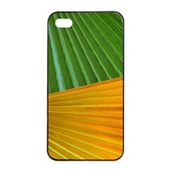 Pattern Colorful Palm Leaves Apple Iphone 4/4s Seamless Case (black)
