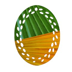 Pattern Colorful Palm Leaves Oval Filigree Ornament (two Sides)