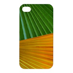 Pattern Colorful Palm Leaves Apple Iphone 4/4s Premium Hardshell Case