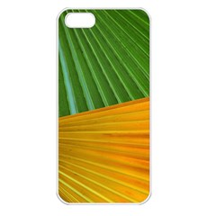 Pattern Colorful Palm Leaves Apple Iphone 5 Seamless Case (white)