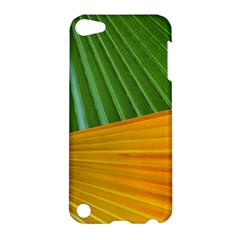 Pattern Colorful Palm Leaves Apple Ipod Touch 5 Hardshell Case