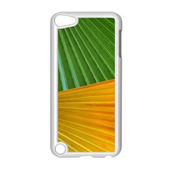 Pattern Colorful Palm Leaves Apple Ipod Touch 5 Case (white)