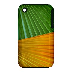 Pattern Colorful Palm Leaves Iphone 3s/3gs