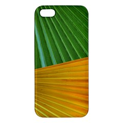 Pattern Colorful Palm Leaves Apple Iphone 5 Premium Hardshell Case