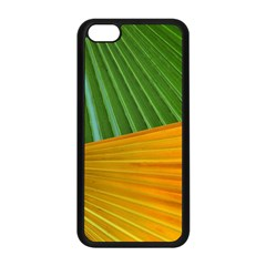 Pattern Colorful Palm Leaves Apple Iphone 5c Seamless Case (black)