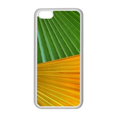 Pattern Colorful Palm Leaves Apple Iphone 5c Seamless Case (white)