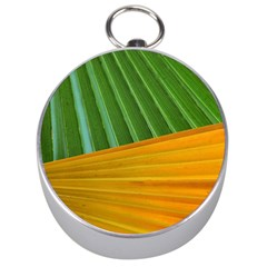 Pattern Colorful Palm Leaves Silver Compasses