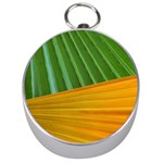 Pattern Colorful Palm Leaves Silver Compasses Front