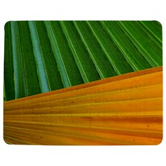 Pattern Colorful Palm Leaves Jigsaw Puzzle Photo Stand (rectangular)