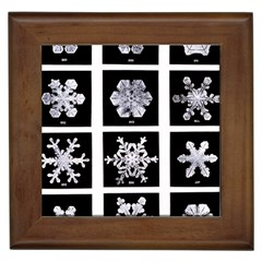 Snowflakes Exemplifies Emergence In A Physical System Framed Tiles