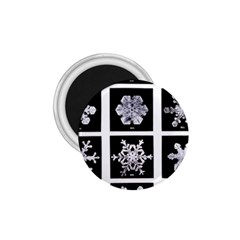 Snowflakes Exemplifies Emergence In A Physical System 1 75  Magnets