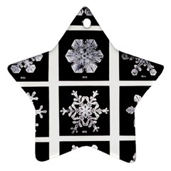 Snowflakes Exemplifies Emergence In A Physical System Ornament (star)
