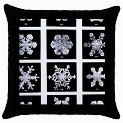 Snowflakes Exemplifies Emergence In A Physical System Throw Pillow Case (Black)