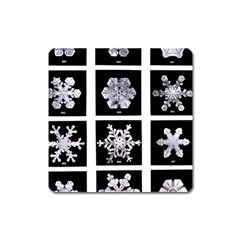 Snowflakes Exemplifies Emergence In A Physical System Square Magnet