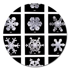 Snowflakes Exemplifies Emergence In A Physical System Magnet 5  (round)