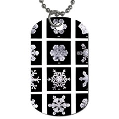 Snowflakes Exemplifies Emergence In A Physical System Dog Tag (two Sides)