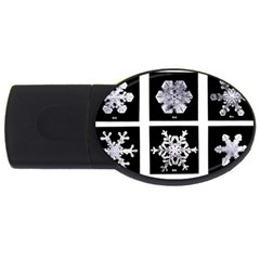 Snowflakes Exemplifies Emergence In A Physical System Usb Flash Drive Oval (4 Gb)