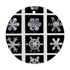 Snowflakes Exemplifies Emergence In A Physical System Round Ornament (two Sides)