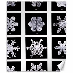 Snowflakes Exemplifies Emergence In A Physical System Canvas 8  X 10