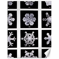 Snowflakes Exemplifies Emergence In A Physical System Canvas 12  X 16