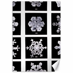 Snowflakes Exemplifies Emergence In A Physical System Canvas 12  X 18
