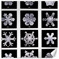 Snowflakes Exemplifies Emergence In A Physical System Canvas 16  X 16