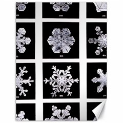 Snowflakes Exemplifies Emergence In A Physical System Canvas 18  x 24
