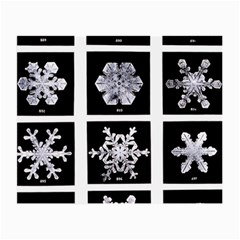 Snowflakes Exemplifies Emergence In A Physical System Small Glasses Cloth (2 Side)