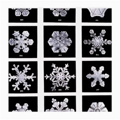 Snowflakes Exemplifies Emergence In A Physical System Medium Glasses Cloth (2 Side)