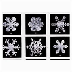 Snowflakes Exemplifies Emergence In A Physical System Large Glasses Cloth (2 Side)