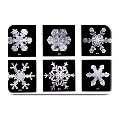 Snowflakes Exemplifies Emergence In A Physical System Plate Mats