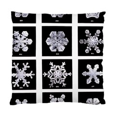 Snowflakes Exemplifies Emergence In A Physical System Standard Cushion Case (two Sides)